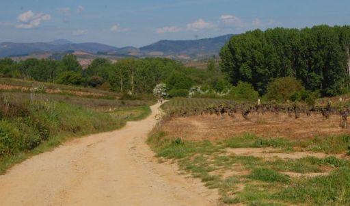 Si el día es soleado, se hace muy cansado el camino
